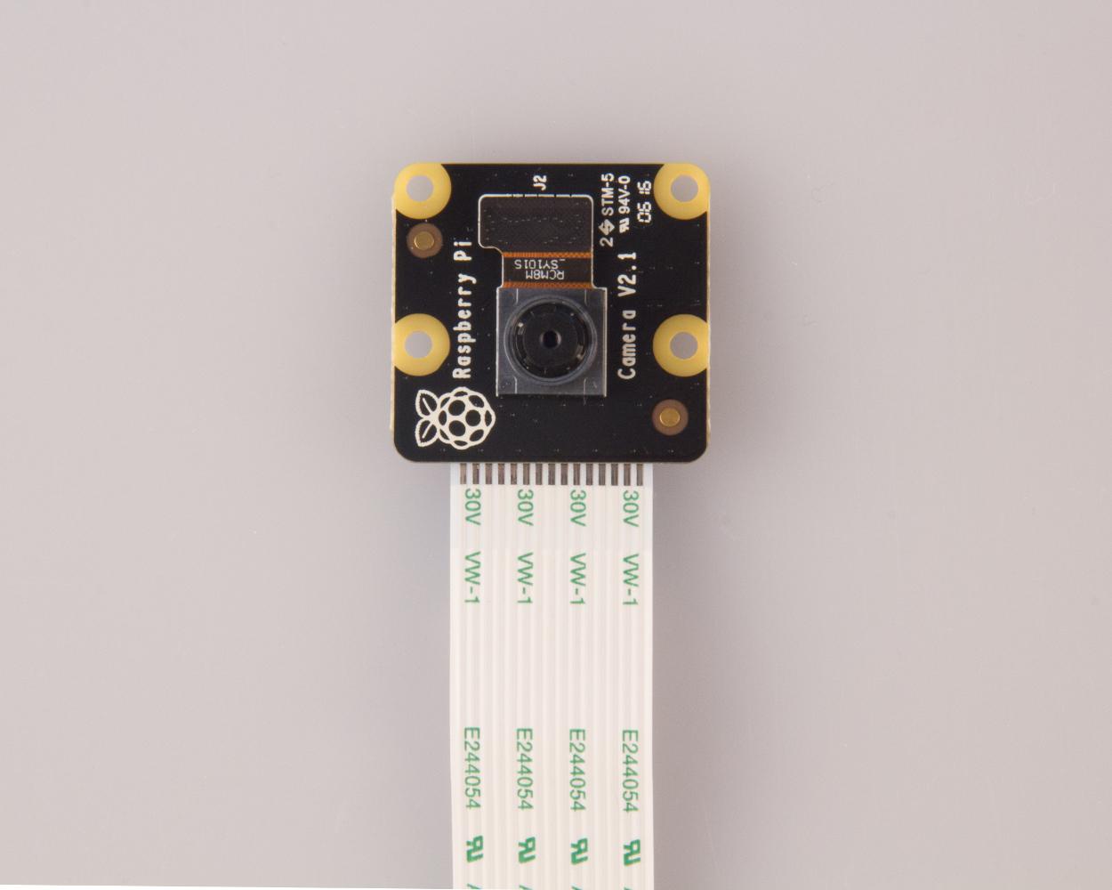 Raspberry Pi Camera Noir