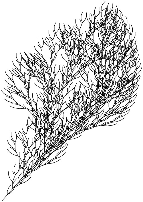 Figure 4 A fractal bush